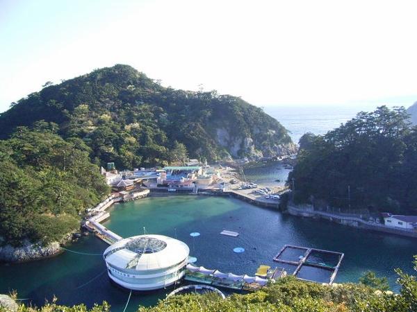 1下田海中水族館1 (600x450)